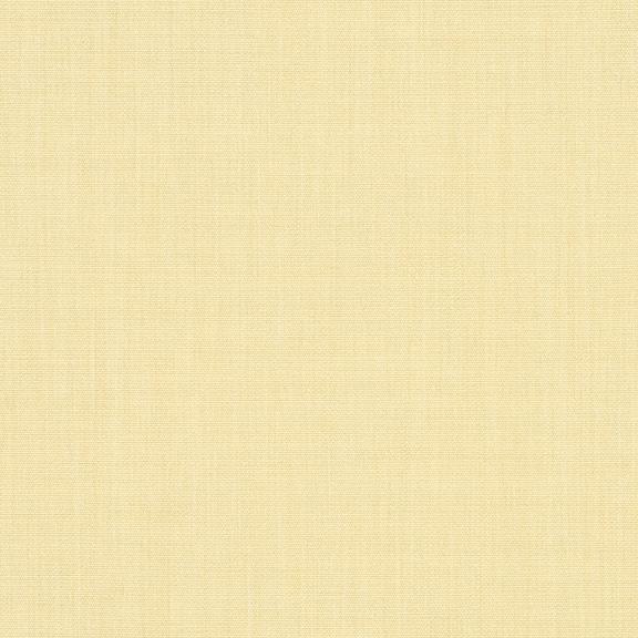 Parchment_4683