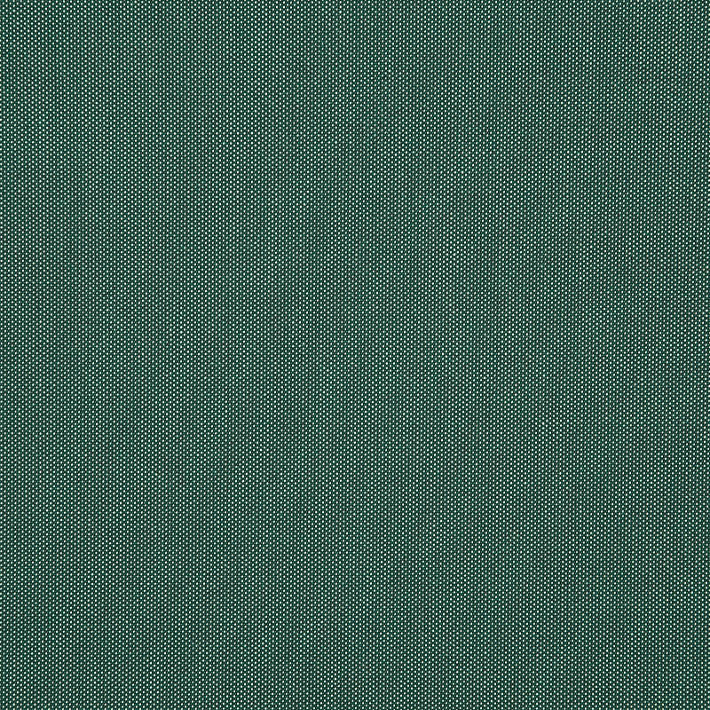Tresco Eucalyptus 4670